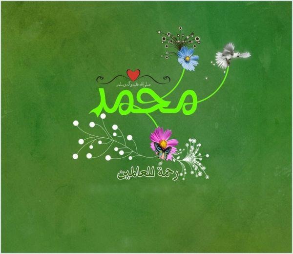 hazrat_muhammad_rasoolallah_saww-other