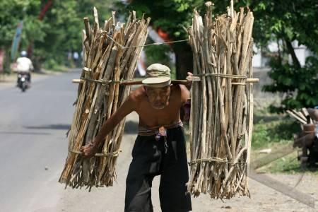 penjual-kayu-kasim