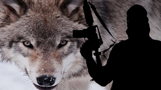 aksi-lone-wolf-terrorism-adu-eksis-isis-versus-ji