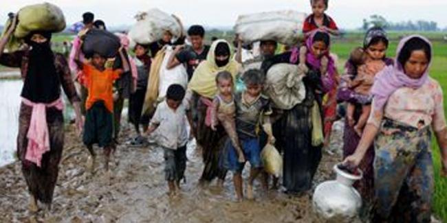 Ini Permintaan ICMI Kepada ASEAN Terkait Nasib Warga Rohingya