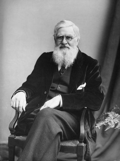 Alfred Russel Wallace (1823-1913), ilmuwan naturalis Inggris penemu garis Wallace. Photo: Hulton-Deutsch Collection/Corbis