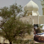 Bir Thaflah: Sumur Ajaib Bukti Mukjizat Rasulullah