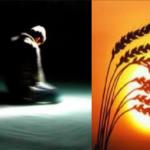 Mengenal 10 Keutamaan Sikap Tawadhu